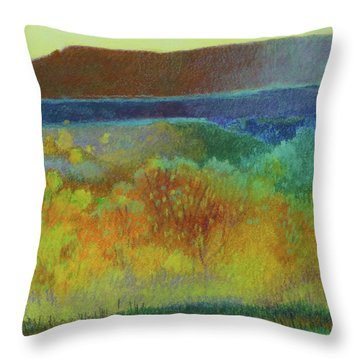 Dream Of Dakota West Throw Pillow