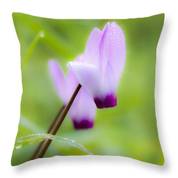 Dream On Purple Dew Drops Throw Pillow