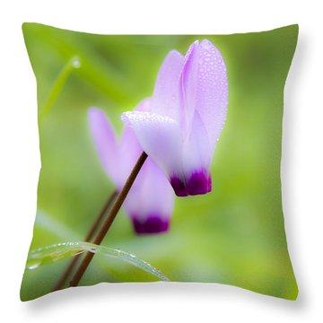 Dream On Purple Dew Drops Throw Pillow