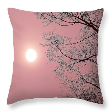 Dream State Throw Pillow by Danielle R T Haney