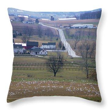 Dream Village Throw Pillow by Vilas Malankar
