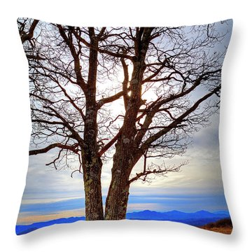 Dreamcatcher Throw Pillow by Dale R Carlson