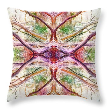 Dreamchaser #3213 Throw Pillow