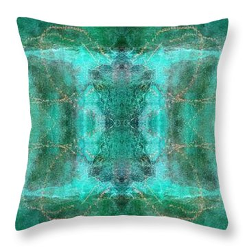Dreamchaser #4727 Throw Pillow