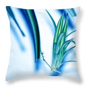 Throw Pillow featuring the photograph Dreaming Abstract Today by Susanne Van Hulst