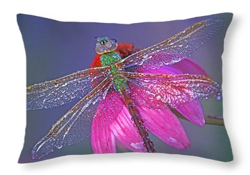 Dreaming Dragon Throw Pillow by Bill Morgenstern