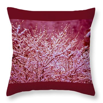 Throw Pillow featuring the photograph Dreaming In Red - Winter Wonderland by Susanne Van Hulst