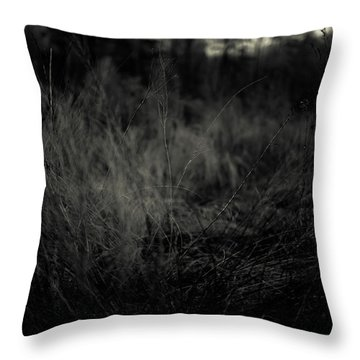 Throw Pillow featuring the photograph Dreaming In by Shane Holsclaw