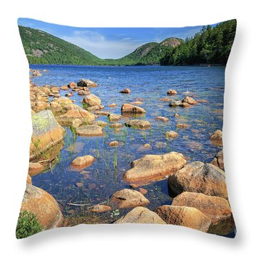 Dreaming Of Acadia Throw Pillow