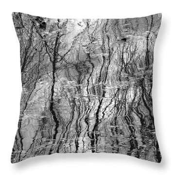 Dreaming Of Vincent Throw Pillow