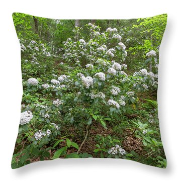 Throw Pillow featuring the photograph Dreaming The World by Chris Scroggins