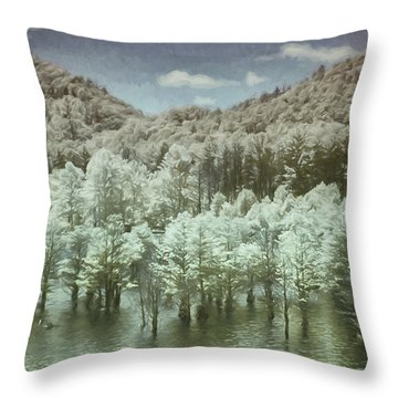 Dreaming Without Words Throw Pillow