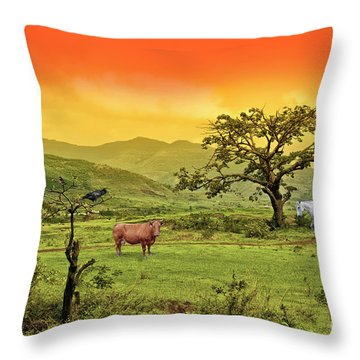 Throw Pillow featuring the photograph Dreamland by Charuhas Images