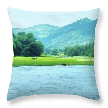 Animals In Li River Throw Pillow