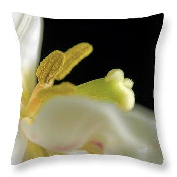 Dreams Throw Pillow by Elsa Marie Santoro