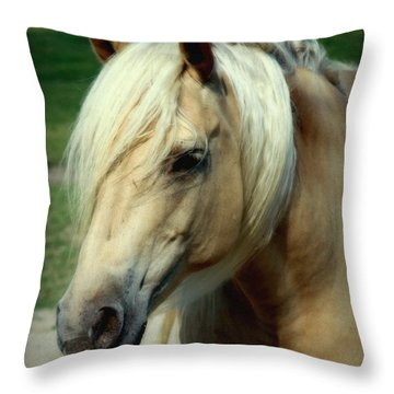 Dreams Of Honey Throw Pillow by Karen Wiles