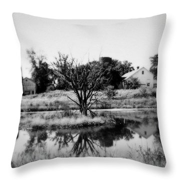 Dreamscape Throw Pillow by Tom Druin