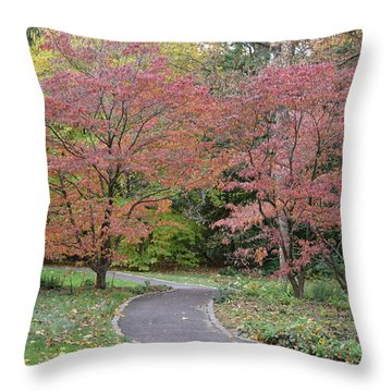 Throw Pillow featuring the photograph Dreamwalk by Deborah  Crew-Johnson