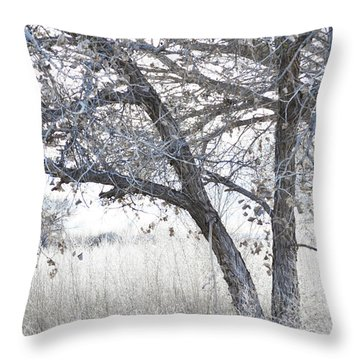 Throw Pillow featuring the photograph Dreamy Bosque Tree by Andrea Hazel Ihlefeld