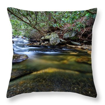Dreamy Creek Throw Pillow
