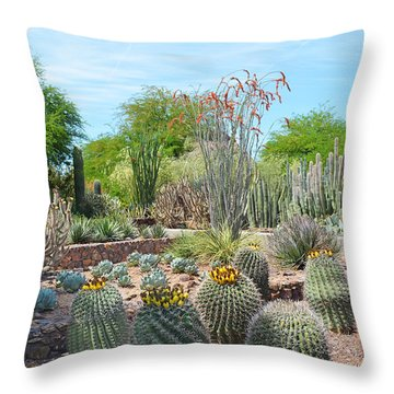 Dreamy Desert Cactus Throw Pillow by Aimee L Maher Photography and Art Visit ALMGallerydotcom