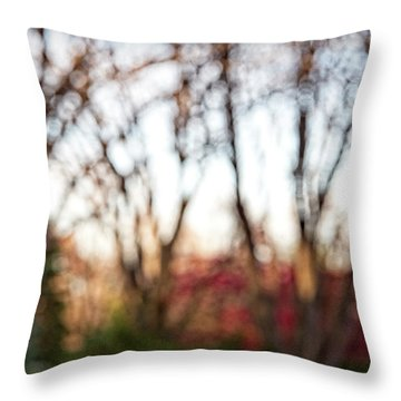 Throw Pillow featuring the photograph Dreamy Fall Colors by Susan Stone