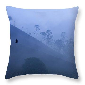 Dreamy Throw Pillow