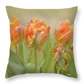 Throw Pillow featuring the photograph Dreamy Parrot Tulips by Ann Bridges