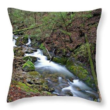 Dreamy Passage Throw Pillow