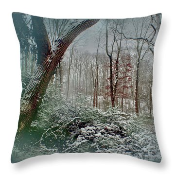 Dreamy Snow Throw Pillow by Sandy Moulder