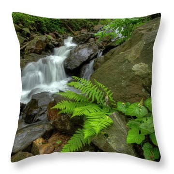 Throw Pillow featuring the photograph Dreamy Waterfall Cascades by Debra and Dave Vanderlaan