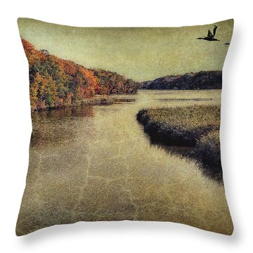 Dreary Autumn Throw Pillow