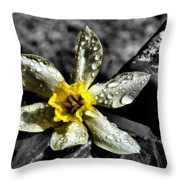 Floral Digital Art Throw Pillows
