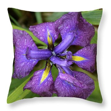 Drenched Japanese Iris Throw Pillow