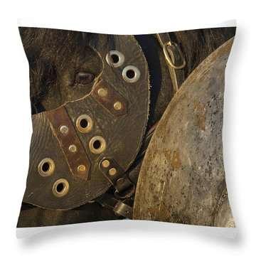 Throw Pillow featuring the photograph Dressed For Battle D6722 by Wes and Dotty Weber