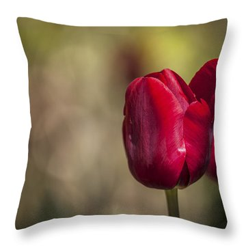 Dressed For Spring Throw Pillow