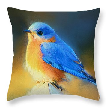 Dressed In Blue Throw Pillow