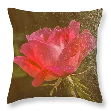 Dressed In Gold Throw Pillow