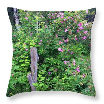 Dressed In Pink Throw Pillow