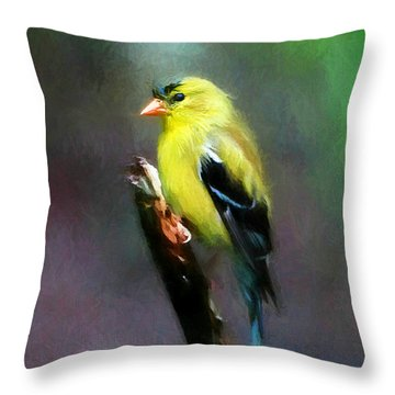 Dressed To Kill Throw Pillow by Tina  LeCour