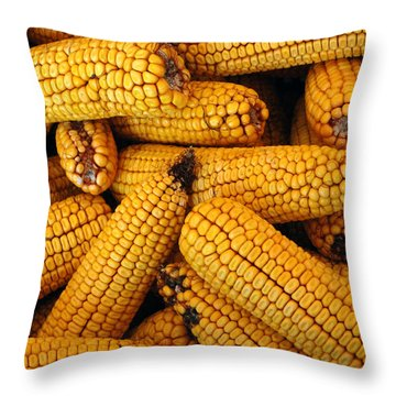 Dried Corn Cobs Throw Pillow