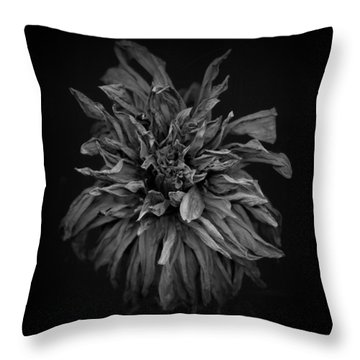 Dried Dahlia 2 Throw Pillow