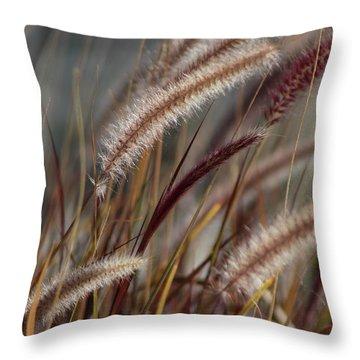 Dried Desert Grass Plumes In Honey Brown Throw Pillow