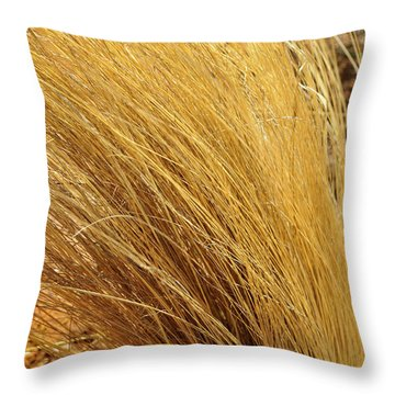 Dried Grass Throw Pillow