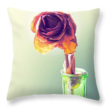 Dried Rose Throw Pillow by Brian Wallace