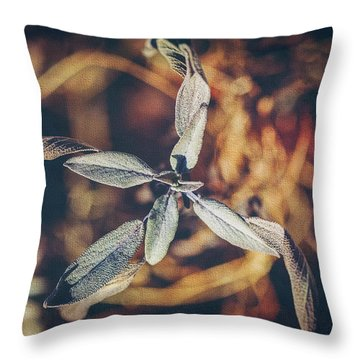Throw Pillow featuring the photograph Dried Sage by Anna Louise