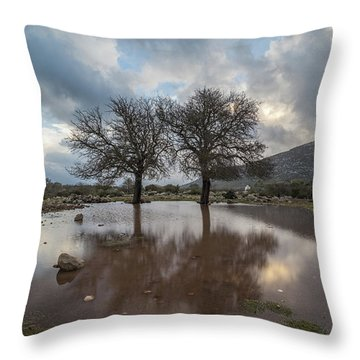 Dried Tree Reflected Throw Pillow