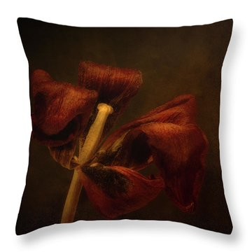 Dried Tulip Blossom 2 Throw Pillow
