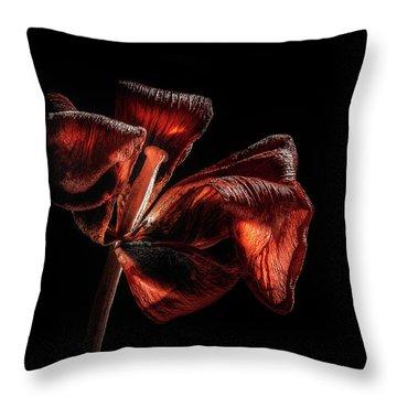 Dried Tulip Blossom Throw Pillow