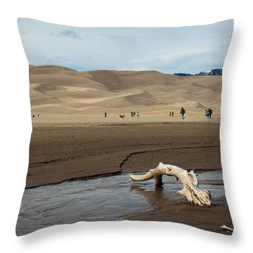 Drift Wood And Dunes Throw Pillow